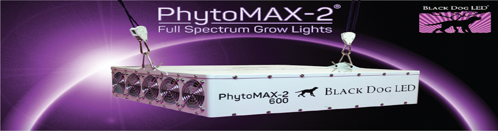 Black Dog LED Phytomax 600 Slider