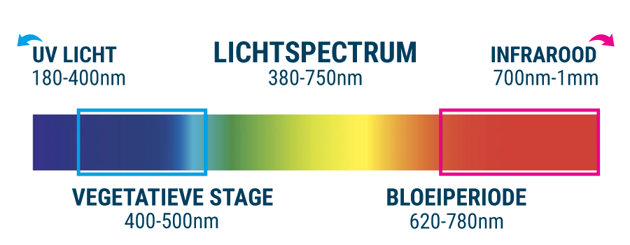 lichtspectrum planten