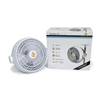 Secret Jardin Monkey Fan - 30W